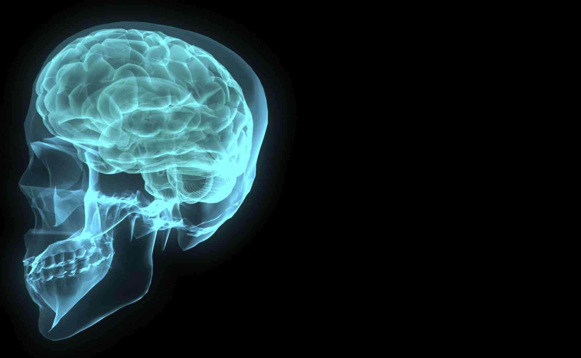crystal meth brain