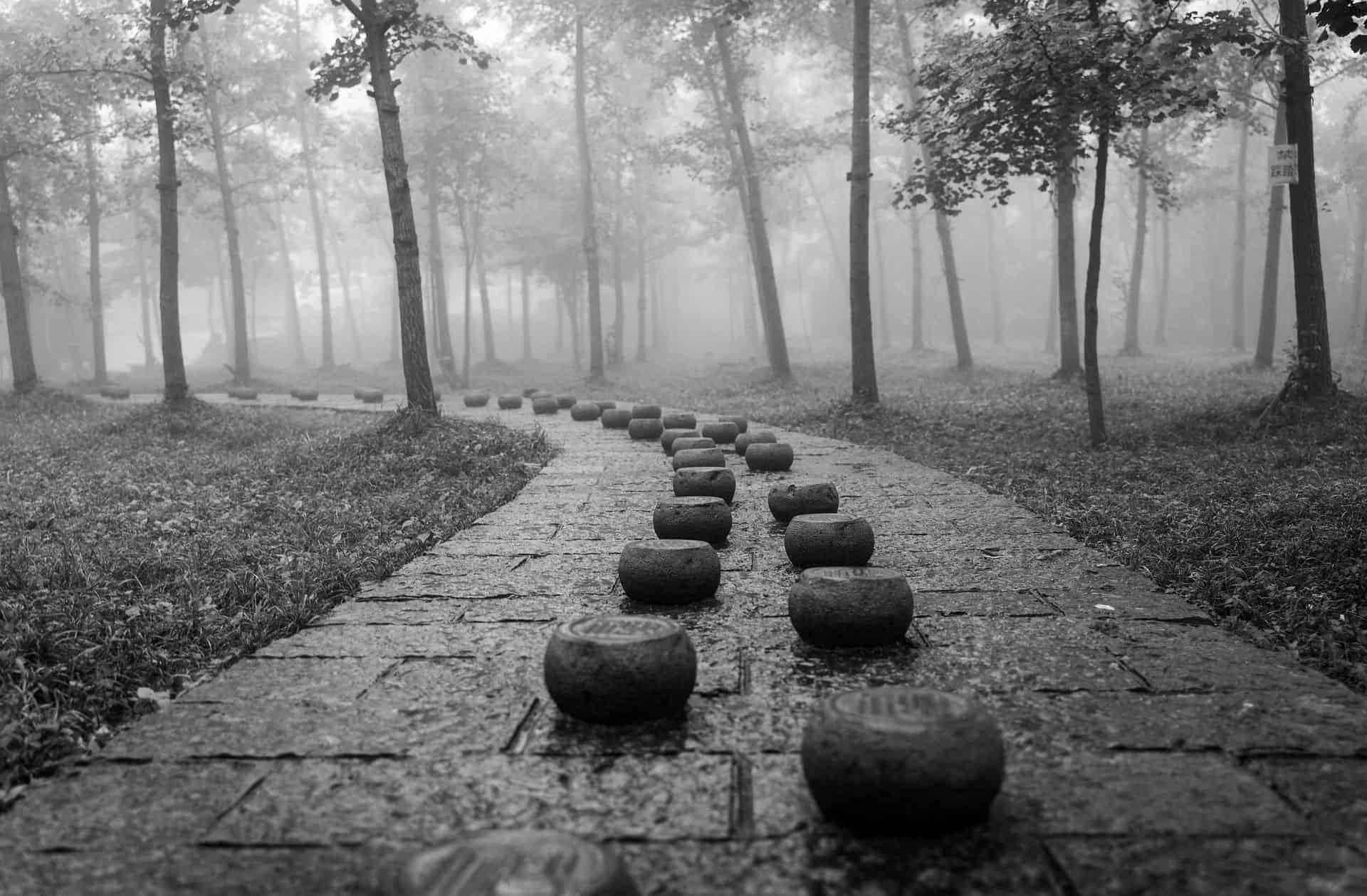 stone path step nine of the twelve step programme